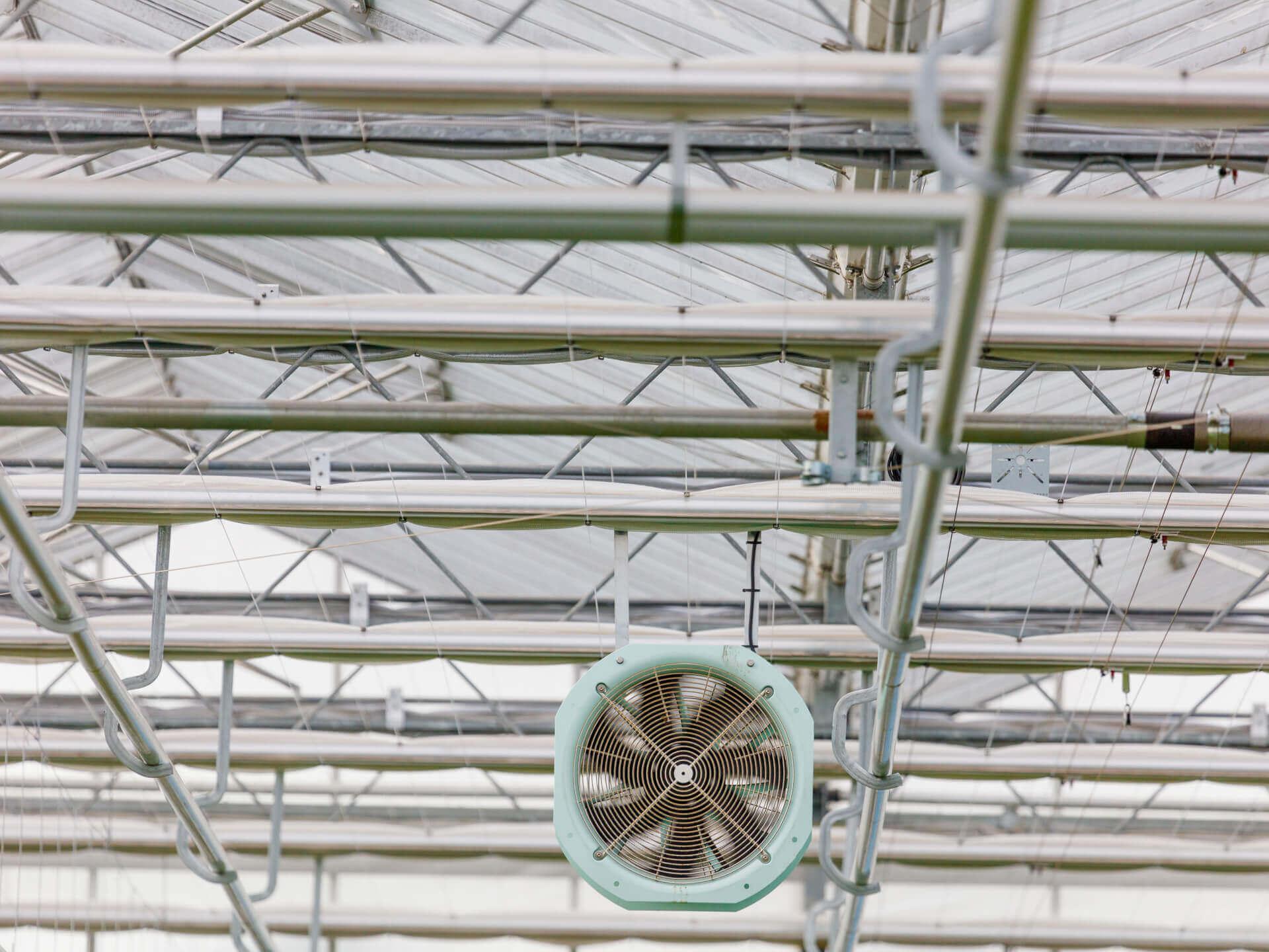 20180130 C 4 Hogervorst Tabben HTgreenhouses kassenbouw sloop kasmaterialen