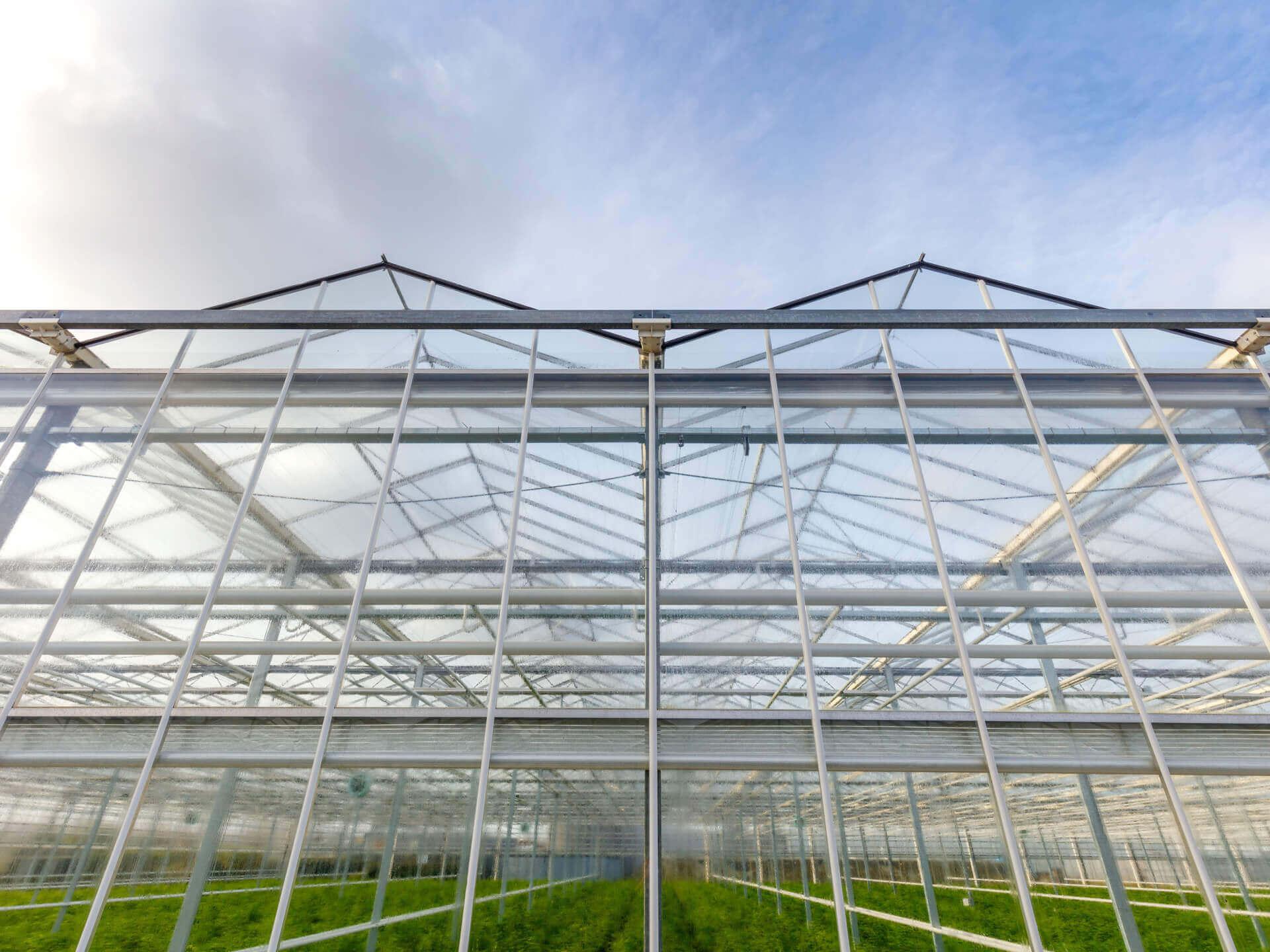 20180130 C 52 Hogervorst Tabben HTgreenhouses kassenbouw sloop kasmaterialen