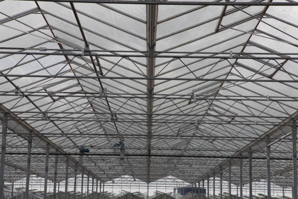 kassensloop kassensloopbedrijf kassensloper ht greenhouses ervaren kassenslopers 7