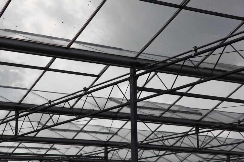 kassensloop kassensloopbedrijf kassensloper ht greenhouses ervaren kassenslopers 9