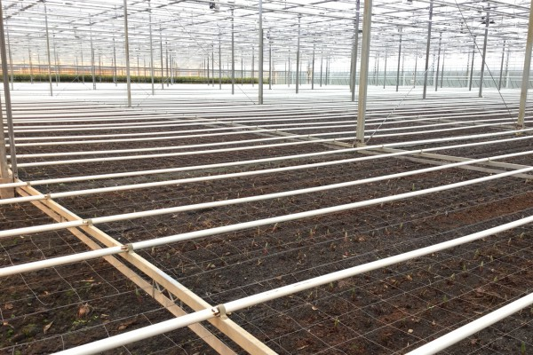 HT Greenhouses Hijsverwarming HWI0001 4